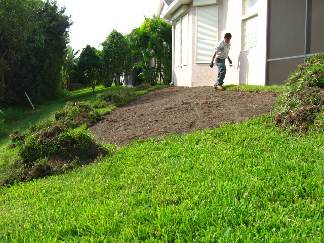 Paradise Lawn and Landscape - Sod Replacement - Brevard County